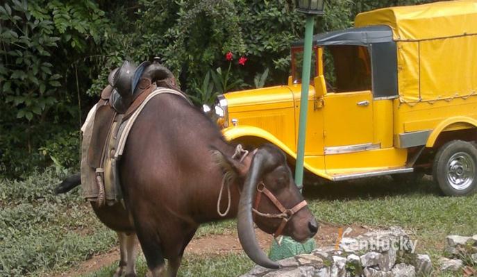 8 dní na Kubě s ubytováním se snídaněmi