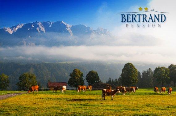 Rakouské Alpy s polopenzí pro 2