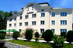 Krušnohorský pobyt s neomezeným wellness v Hotelu Subterra s polopenzí pro dva