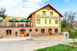 3 až 6denní pobyt pro 2 s konzumací vína v penzionu Sklep na Moravě