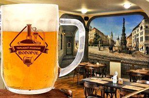 2 nebo 3denní pobyt pro 2 s konzumací piva v hotelu Monopol v Teplicích