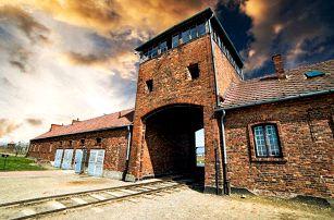 Celodenní zájezd pro 1 osobu do Osvětimi a Březinky v Polsku