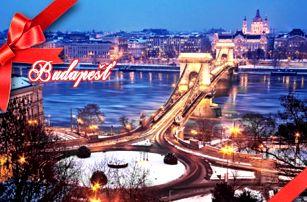 Adventní Budapešť : 1denní výlet pro 1 osobu z Brna nebo Prahy a Pávova