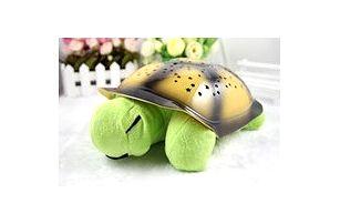 Noční želvička - světle zelená