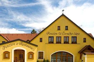 Pobyt pro dva v Penzionu a restauraci U Černého čápa, moravské víno, snídaně a hodina ve vířivce!!