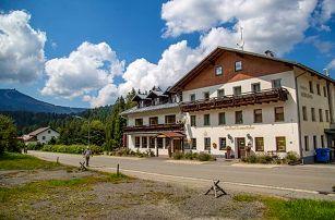 3–5denní pobyt pro dva s polopenzí a wellness na Šumavě v hotelu Lesní dům***