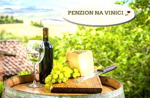 Vinařský pobyt pro dva s polopenzí v penzionu Na Vinici, neomezená konzumace vína, pálenek aj.