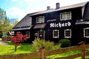 3 až 6denní pobyt s polopenzí a saunou pro 2 v Jeseníkách v penzionu Richard