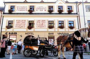 3 až 6denní pobyt pro 2 se snídaněmi a slevami v hotelu Panský dům na Vysočině