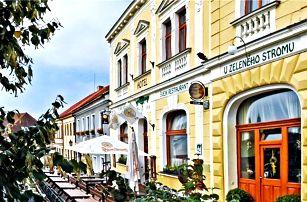 3–5denní pobyt pro 2 osoby s polopenzí v hotelu U Zeleného stromu na Plzeňsku