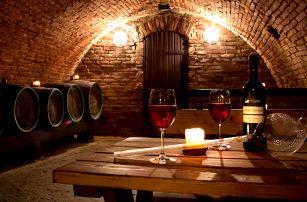 Oceněný hotel Weiss Lechovice s polopenzí a neomezenou konzumací vína na Jižní Moravě