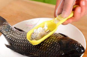 Škrabka na čištění ryb