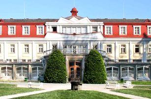 3–6denní pobyt pro 2 se snídaní a lahví vína v penzionu Art v Lázních Bohdaneč