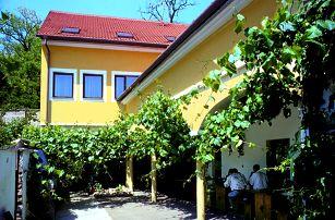Jižní Morava, vinařský pobyt na 3-6 dní pro dva s polopenzí a neom. konzumací vína, do 8/2017