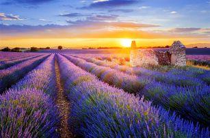 Kouzelná Provence, autobusem, snídaně v ceně
