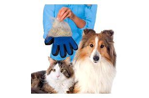 Silikonová rukavice na psí nebo kočičí srst
