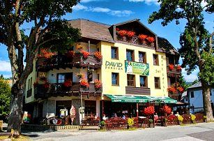 3–5denní wellness pobyt s polopenzí a slevami pro 2 v hotelu David*** v Krkonoších