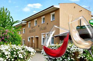 3–5denní pobyt s neomezenou konzumací vína pro 2 v penzionu Pálava na jihu Moravy