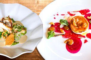 Degustační menu v duchu moderní gastronomie