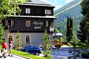 2 až 5denní wellness pobyt s polopenzí pro 2 v Alpském hotelu v Krkonoších
