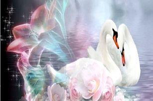 Zvířecí obrázky - mozaika z korálků