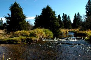 Podzimní Šumava s vydatnou polopenzí a saunou