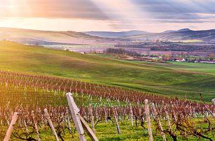 Podzimní pobyt na jižní Moravě včetně polopenze
