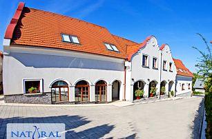 Relaxační dovolená v maďarském Győru: neomezené wellness, fitness i vstup do lázní