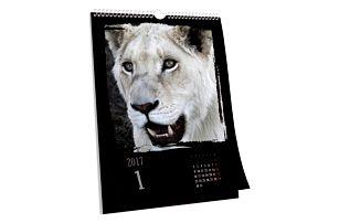 Nástěnné či stolní kalendáře z vlastních fotografií