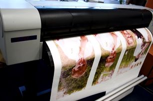 Fotoobraz nebo fotokoláž z vašich fotografií na PVC plátně