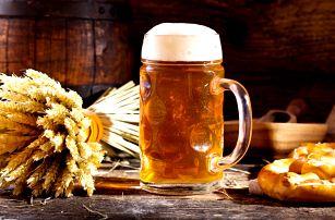 Pobyt v pivovarském hotelu s degustací piva