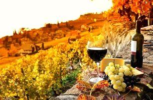 Jižní Morava: vinařský pobyt s polopenzí