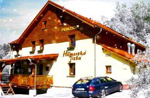 3–6denní pobyt pro 2 s polopenzí v penzionu Hamerská Jizba v Krušných horách