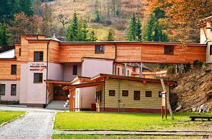 Wellness Hotel Bozeňov na Moravě s polopenzí