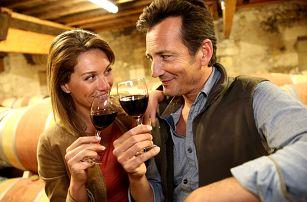 Jižní Morava v penzionu s polopenzí, lahví vína a degustací deseti druhů místních vín