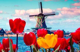 3denní zájezd pro 1 za květinami do Keukenhofu a Amsterdamu