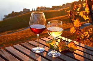 Vinařský pobyt ve Znojmě na 3-8 dní pro dva s polopenzí