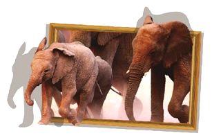 3D samolepka se sloní rodinkou
