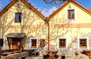 Penzion U Tří Jasanů ve Znojmě s neomezenou konzumací vína a polopenzí