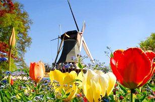 6denní poznávací zájezd pro 1 osobu do voňavého Holandska s návštěvou Amsterdamu