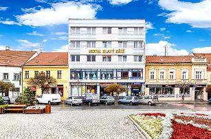 3 až 5denní wellness pobyt pro 2 s polopenzí či plnou penzí v hotelu Zlatý kříž v Třebíči
