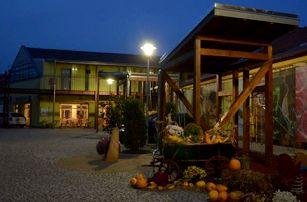 5denní pobyt v 3*Penzionu Welya pro jednu osobu, cyklostezka kolem Dunaje, bazilika Ostrihom.