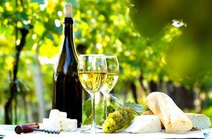 Jižní Morava: Pálava s polopenzí a vínem