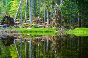 Podzimní Šumava na 3–6 dní s polopenzí pro dva