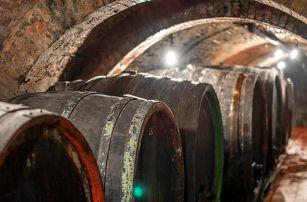 Neomezená konzumace vína a řízená degustace ve Velkých Pavlovicích