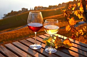 Vinařský pobyt ve Znojmě na 3-7 dní pro dva s polopenzí a výhodami