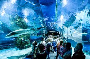 Akvárium v Tropicariu a historické památky Budapeště | Jednodenní poznávací zájezd do Maďarska