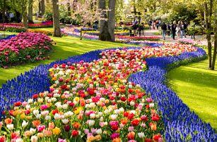 4 dny: Zaanse Schans, Amsterdam a největší kvetoucí park v Evropě Keukenhof s ubytováním a snídaní