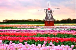 Navštivte Nizozemsko, Pobyt pro dva v příjemném 3* hotelu nedaleko Amsterodamu