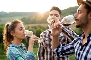 3 dny s degustací ve vinařské oblasti na Slovácku